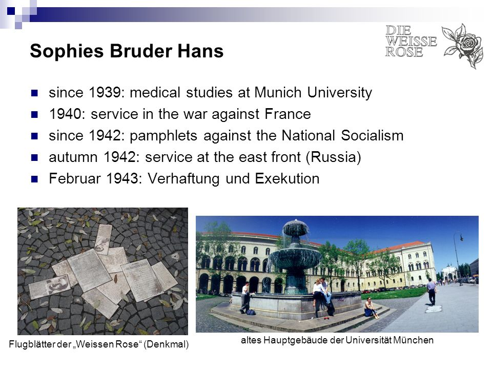 Sophies Bruder Hans since 1939: medical studies at Munich University