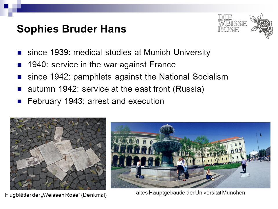 Sophies Bruder Hans since 1939: medical studies at Munich University