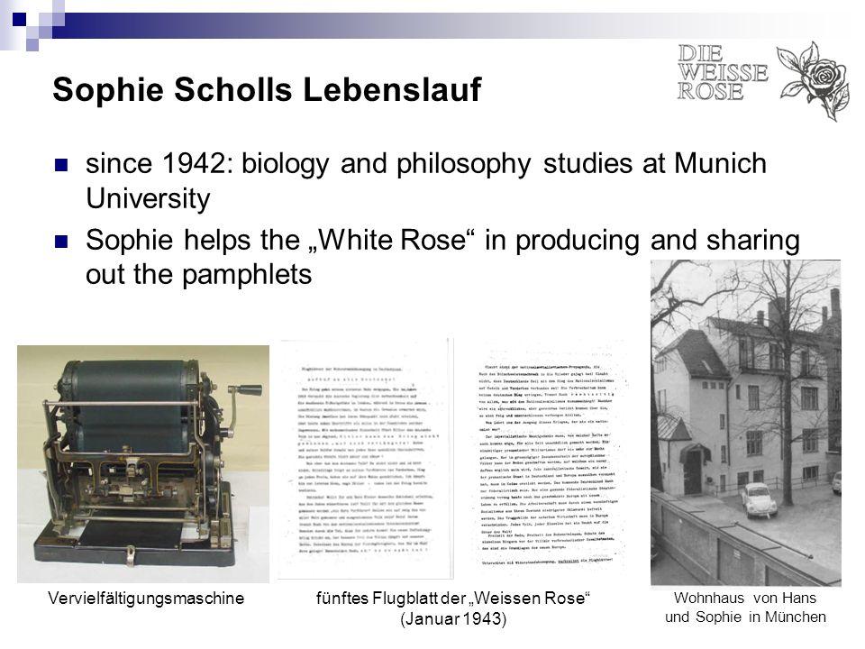 Sophie Scholls Lebenslauf