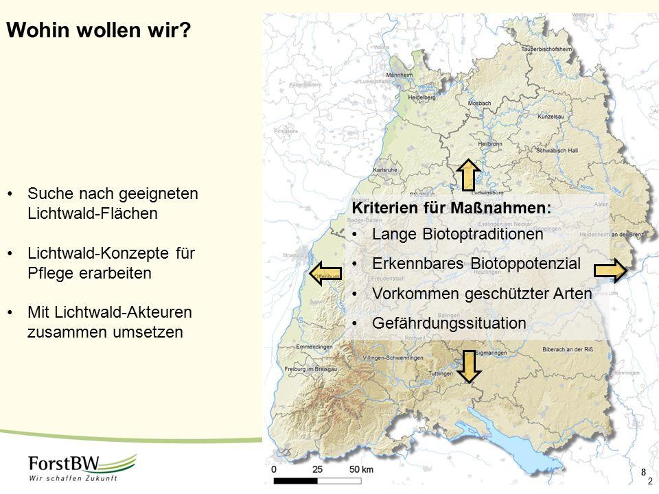 Wohin wollen wir Suche nach geeigneten Lichtwald-Flächen