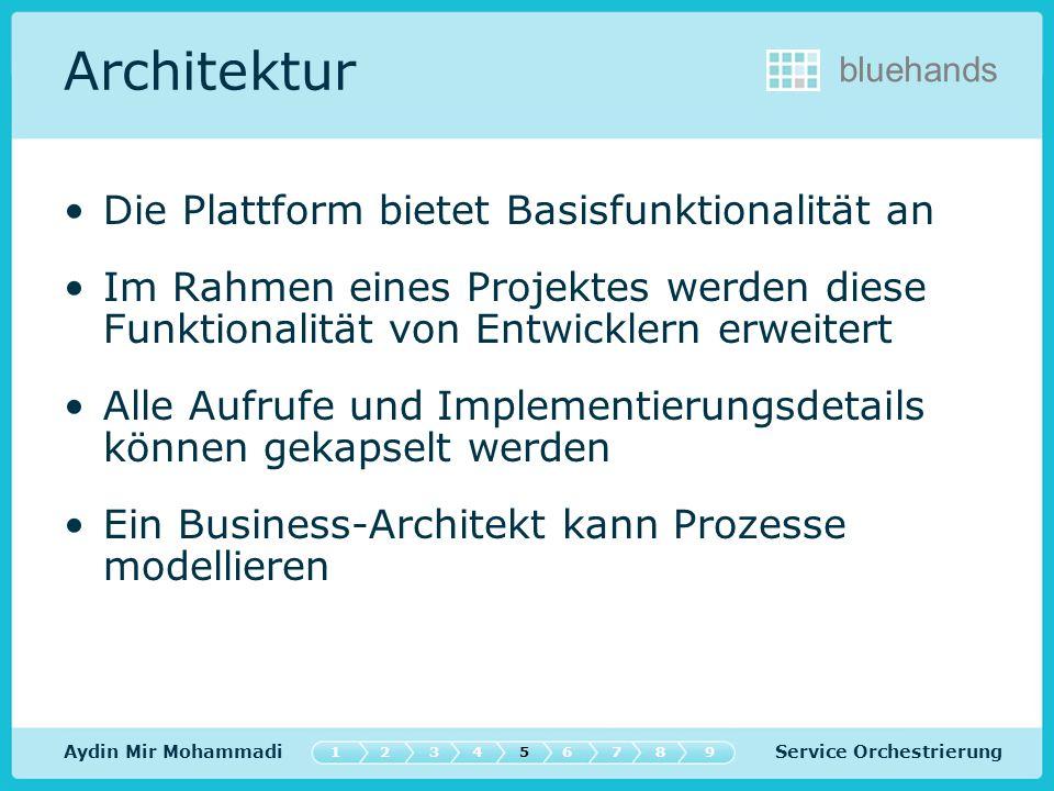 Architektur Die Plattform bietet Basisfunktionalität an