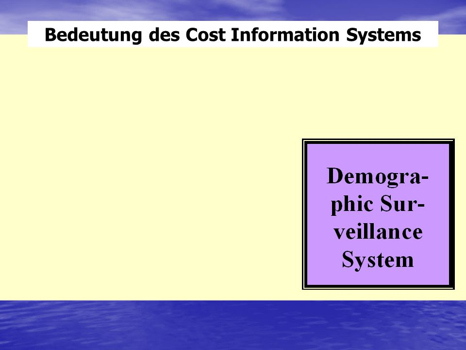 Bedeutung des Cost Information Systems