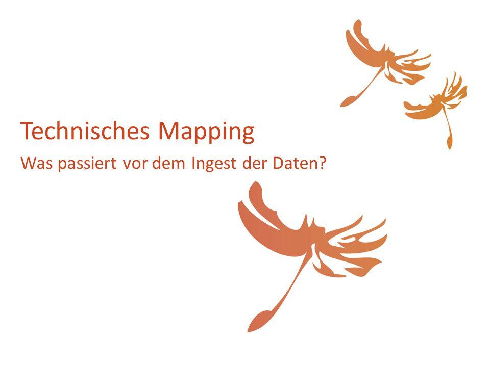 Technisches Mapping Was passiert vor dem Ingest der Daten