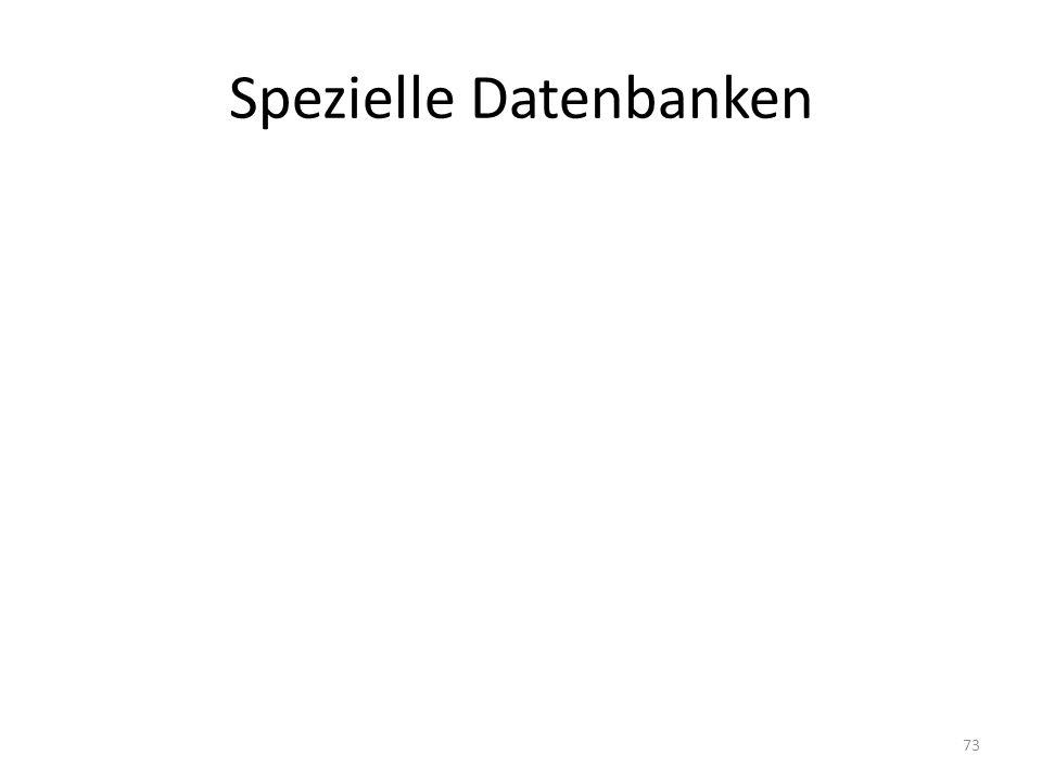 Spezielle Datenbanken