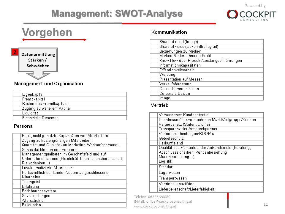 Vorgehen 2 Datenermittlung Stärken / Schwächen 1.10.2010