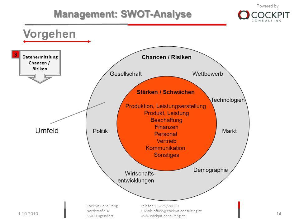Vorgehen 3 Datenermittlung Chancen / Risiken Umfeld 1.10.2010