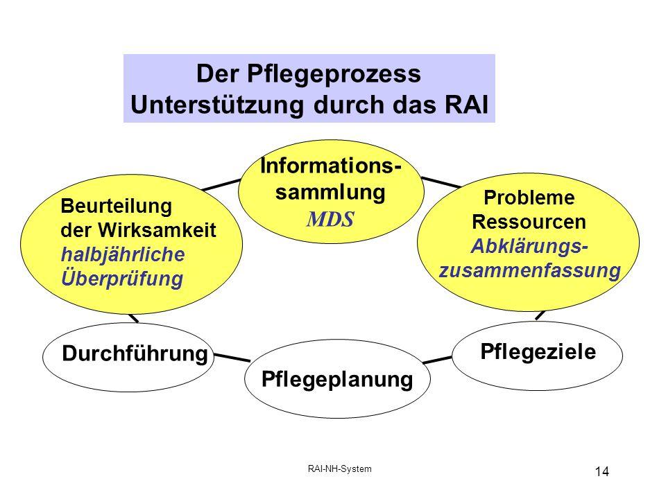 Der Pflegeprozess Unterstützung durch das RAI