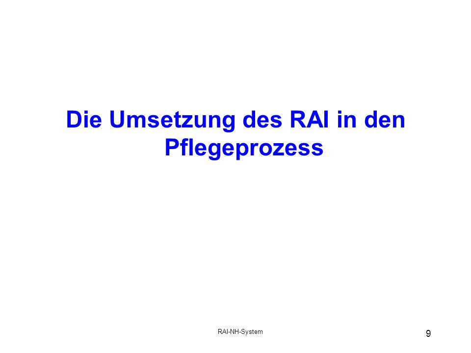 Die Umsetzung des RAI in den Pflegeprozess