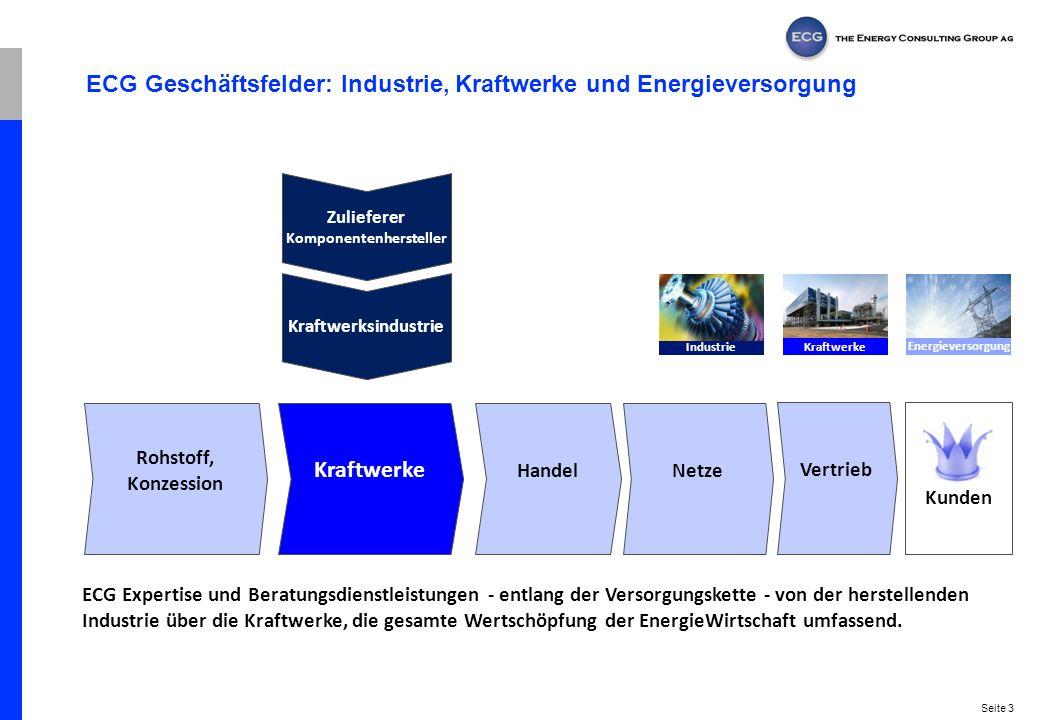 ECG Geschäftsfelder: Industrie, Kraftwerke und Energieversorgung