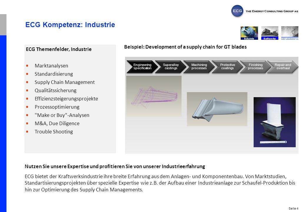 ECG Kompetenz: Industrie
