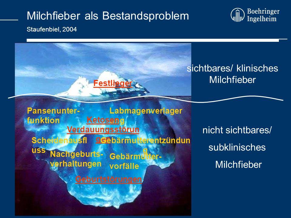 Milchfieber als Bestandsproblem Staufenbiel, 2004