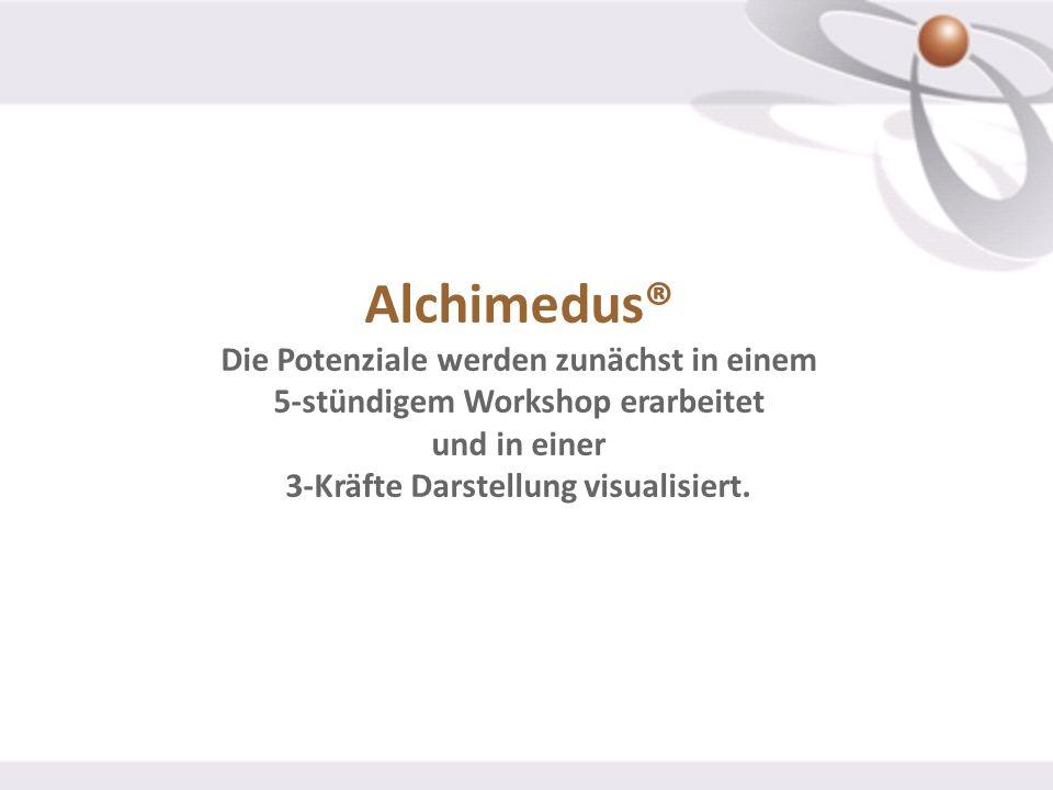 Alchimedus® Die Potenziale werden zunächst in einem 5-stündigem Workshop erarbeitet und in einer 3-Kräfte Darstellung visualisiert.