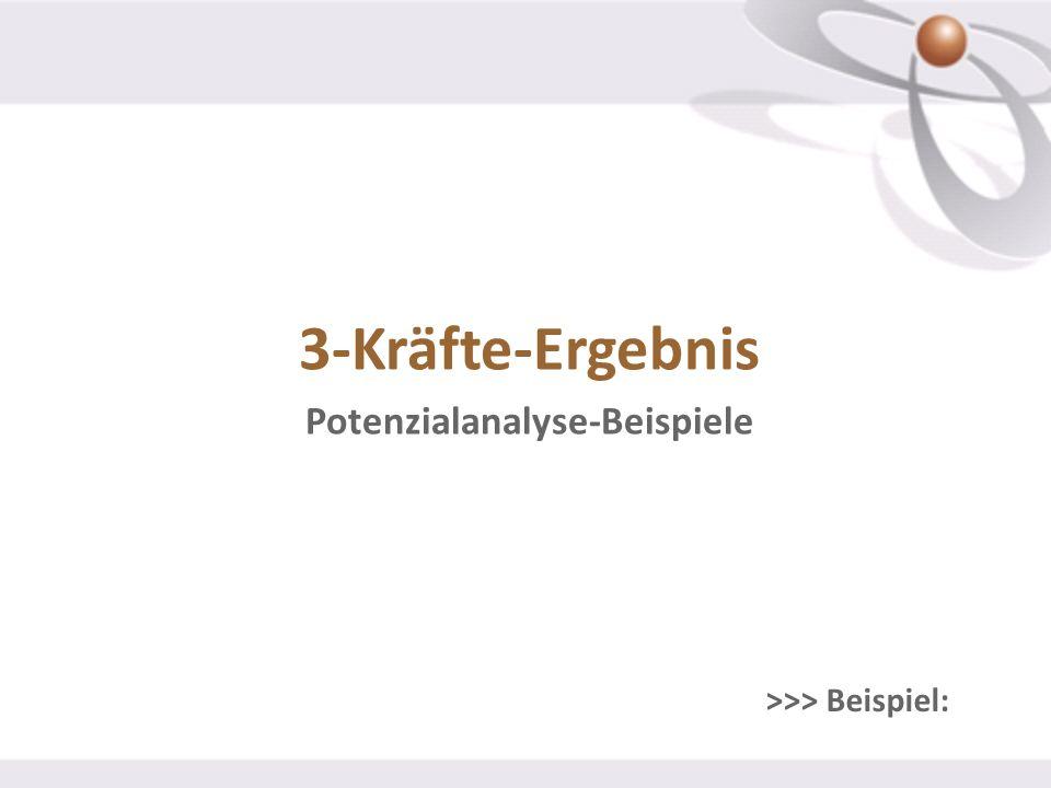 Potenzialanalyse-Beispiele >>> Beispiel: