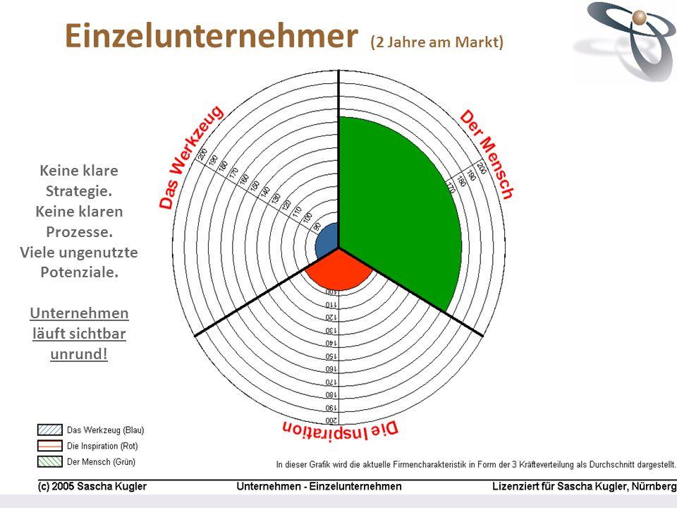 Einzelunternehmer (2 Jahre am Markt)