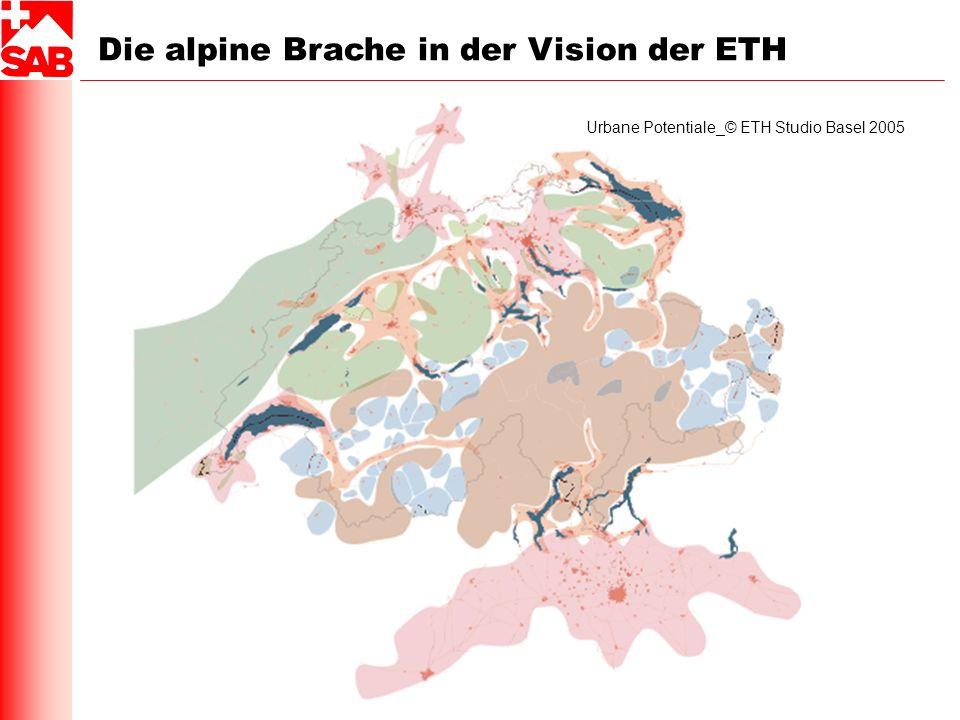Die alpine Brache in der Vision der ETH