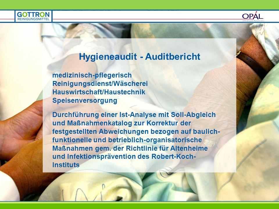 Hygieneaudit - Auditbericht