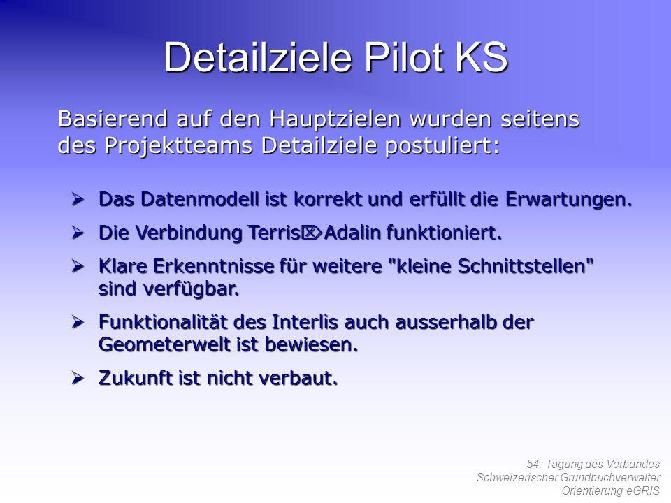 Detailziele Pilot KS Basierend auf den Hauptzielen wurden seitens des Projektteams Detailziele postuliert: