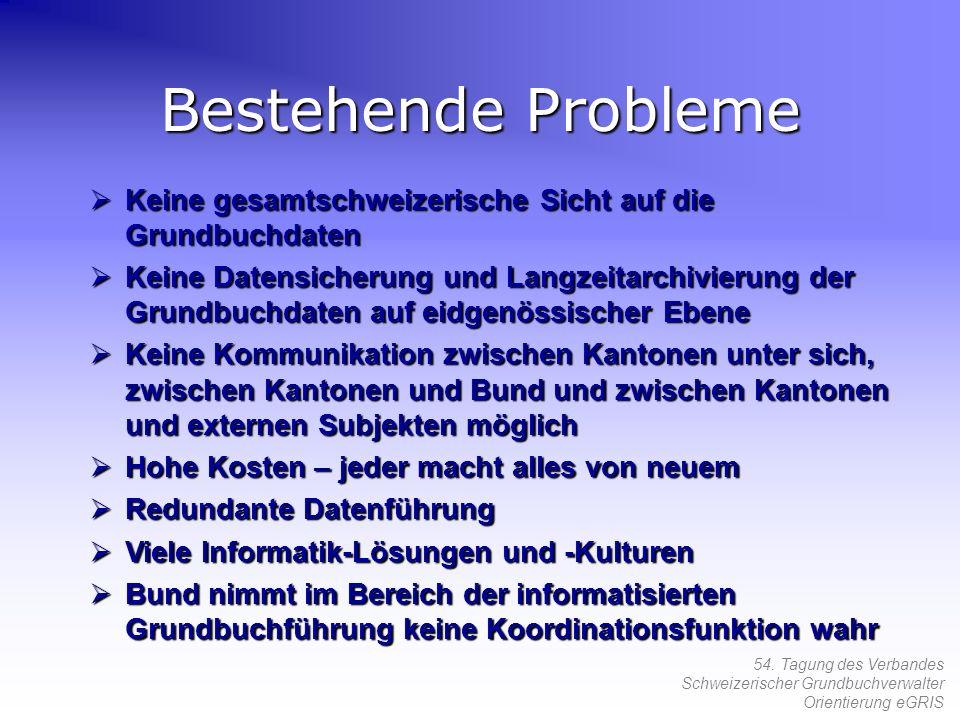 Bestehende Probleme Keine gesamtschweizerische Sicht auf die Grundbuchdaten.