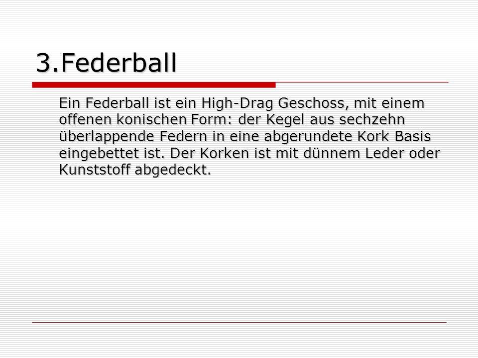 3.Federball