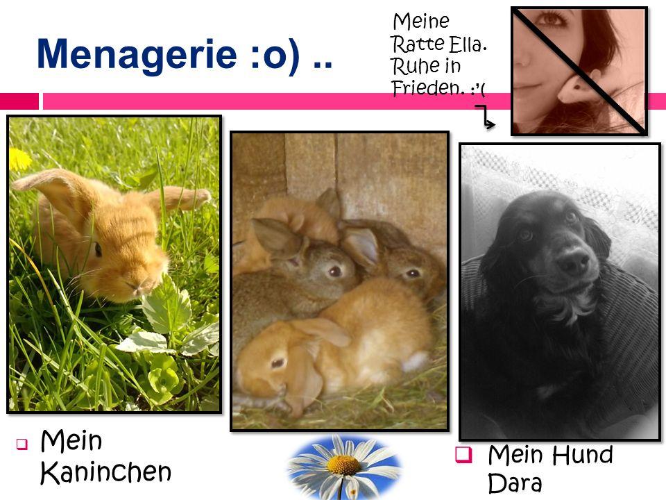 Menagerie :o) .. Mein Kaninchen Mein Hund Dara