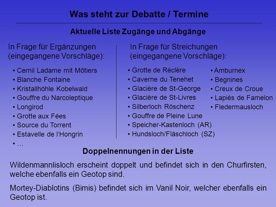 Was steht zur Debatte / Termine