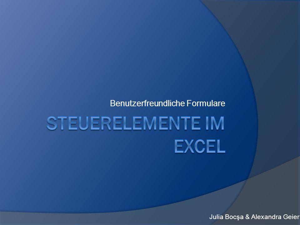 Steuerelemente im Excel