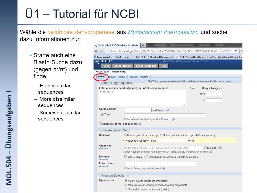 Ü1 – Tutorial für NCBI MOL.504 – Übungsaufgaben I