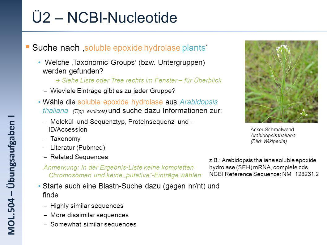Ü2 – NCBI-Nucleotide MOL.504 – Übungsaufgaben I