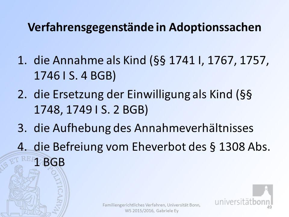 Verfahrensgegenstände in Adoptionssachen
