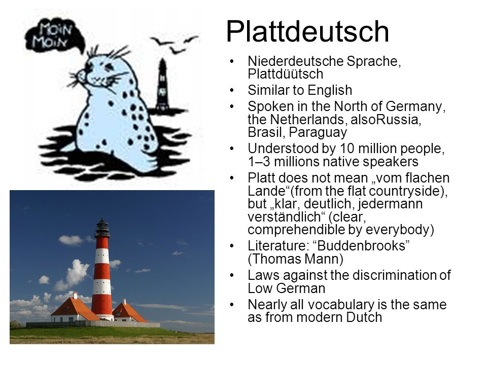 Plattdeutsch Niederdeutsche Sprache, Plattdüütsch Similar to English