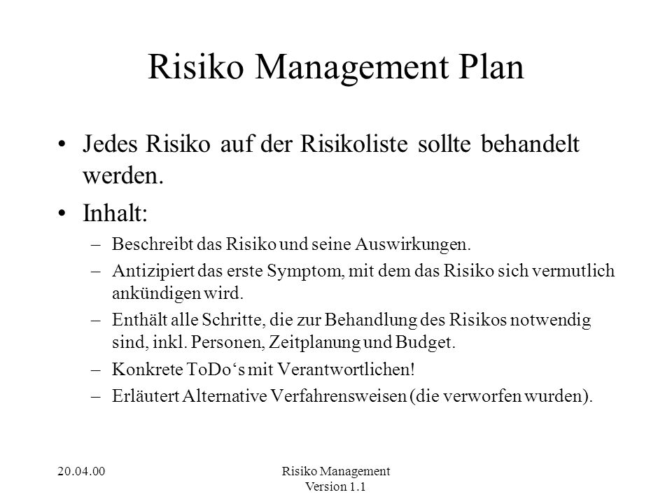 Risiko Management Plan