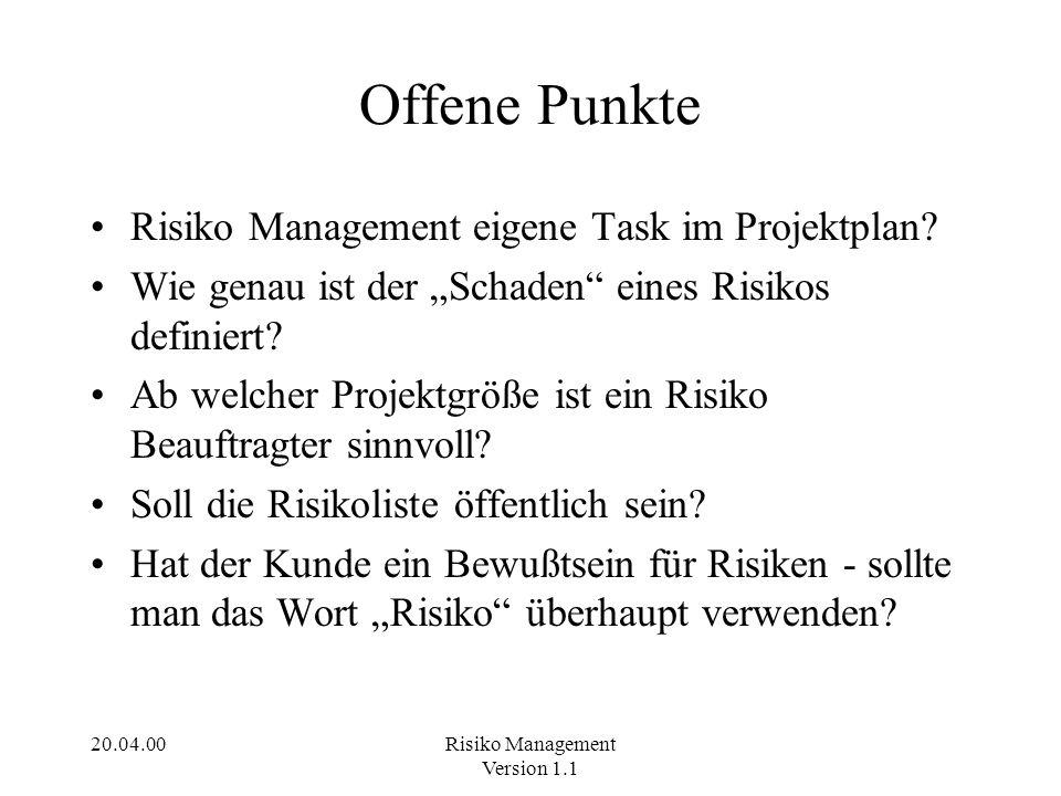 Offene Punkte Risiko Management eigene Task im Projektplan