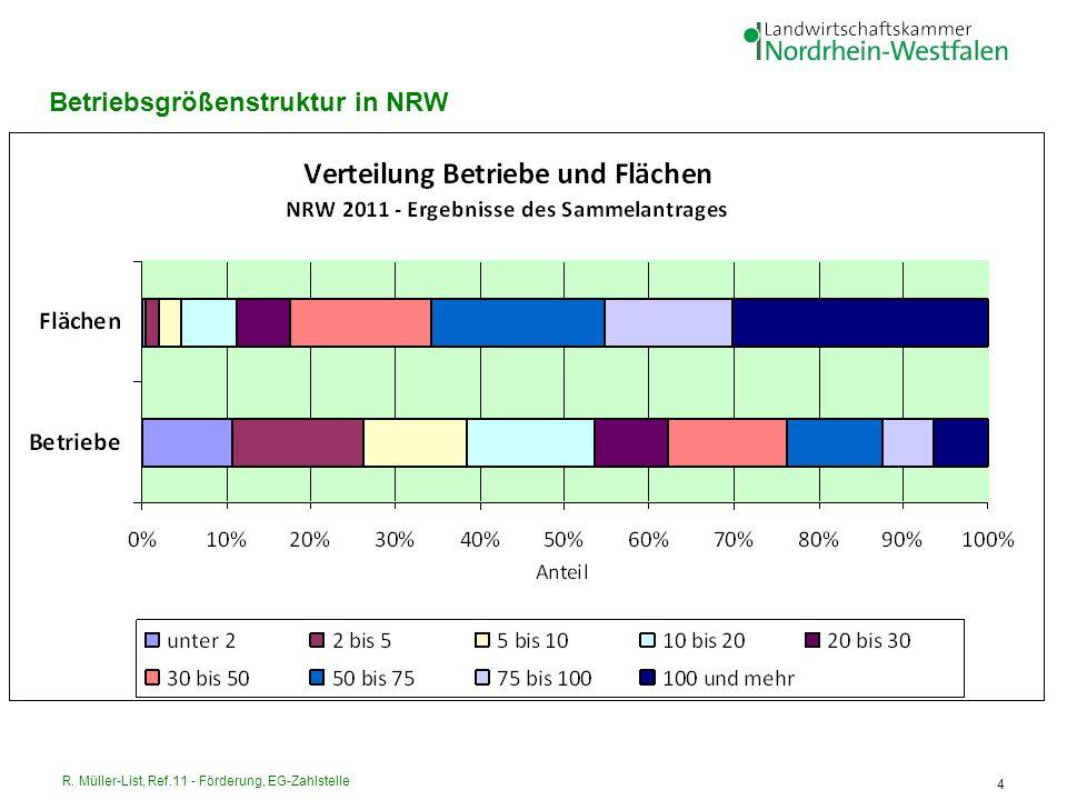 Betriebsgrößenstruktur in NRW