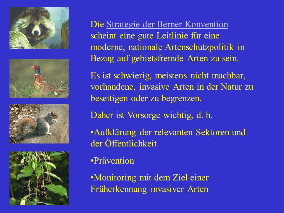 Die Strategie der Berner Konvention scheint eine gute Leitlinie für eine moderne, nationale Artenschutzpolitik in Bezug auf gebietsfremde Arten zu sein.
