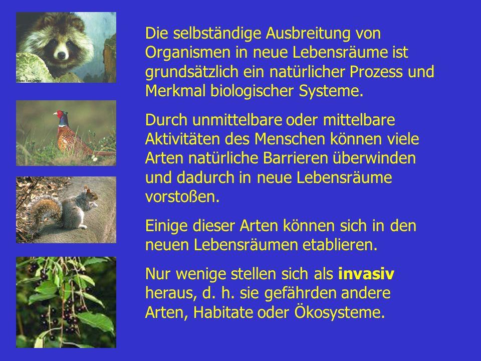 Die selbständige Ausbreitung von Organismen in neue Lebensräume ist grundsätzlich ein natürlicher Prozess und Merkmal biologischer Systeme.