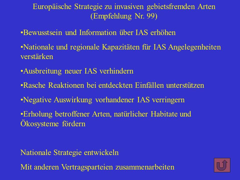 Bewusstsein und Information über IAS erhöhen