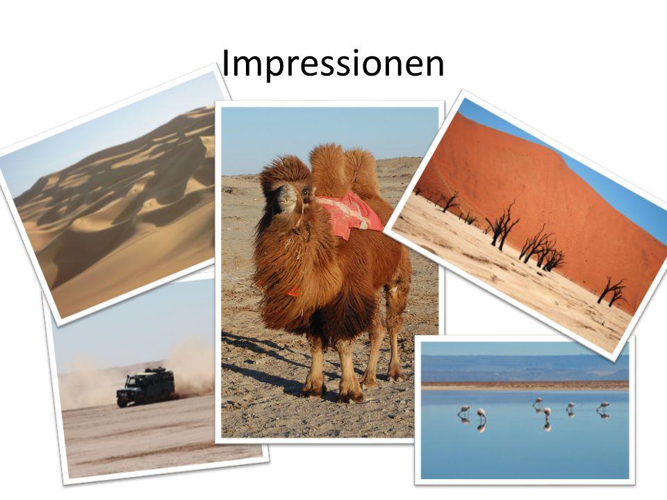 Impressionen Animiere alle Fotos in der richtigen Reihenfolge (zuerst die unten liegenden):
