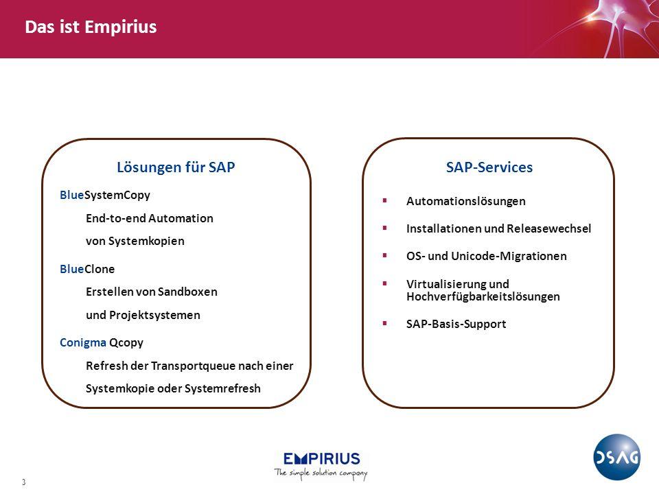 Das ist Empirius Lösungen für SAP SAP-Services