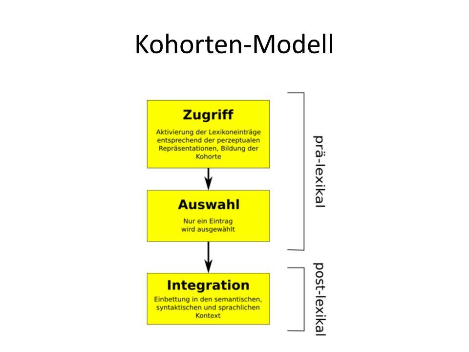 Kohorten-Modell