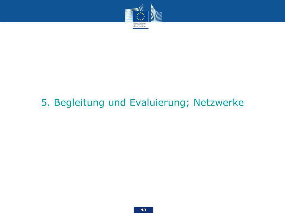 5. Begleitung und Evaluierung; Netzwerke