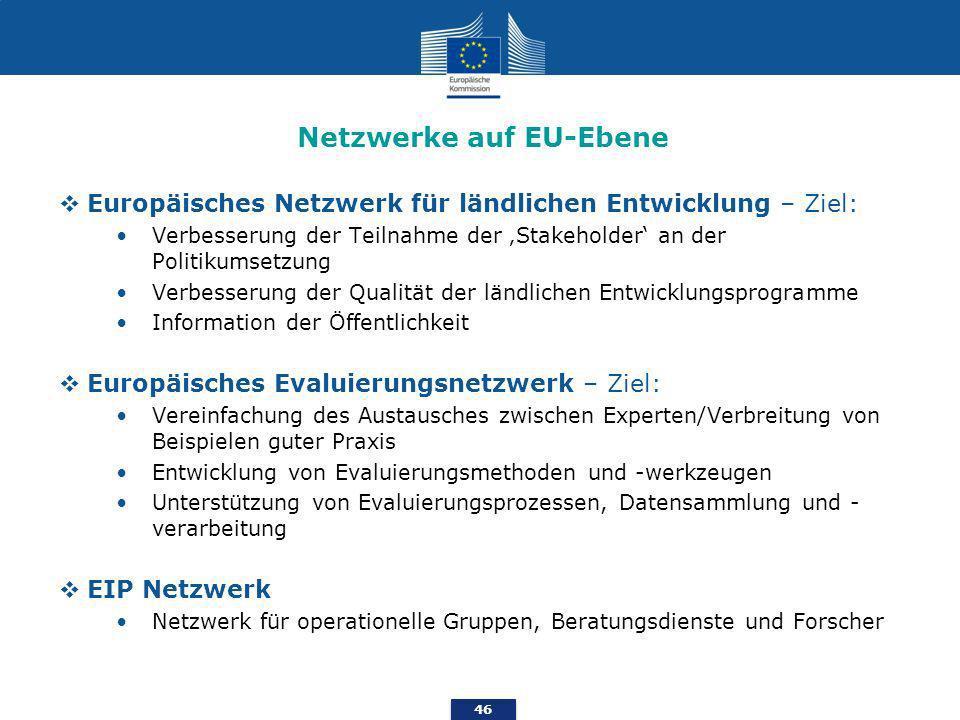Netzwerke auf EU-Ebene