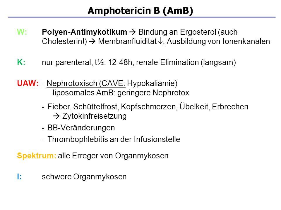 Amphotericin B (AmB) W: Polyen-Antimykotikum  Bindung an Ergosterol (auch Cholesterin!)  Membranfluidität , Ausbildung von Ionenkanälen.
