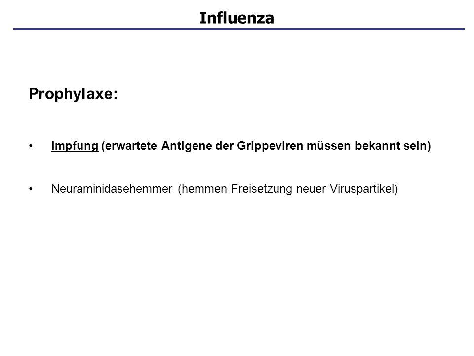 Influenza Prophylaxe: