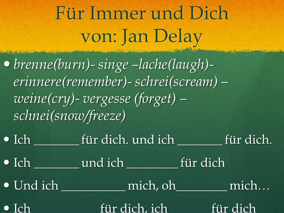 Für Immer und Dich von: Jan Delay