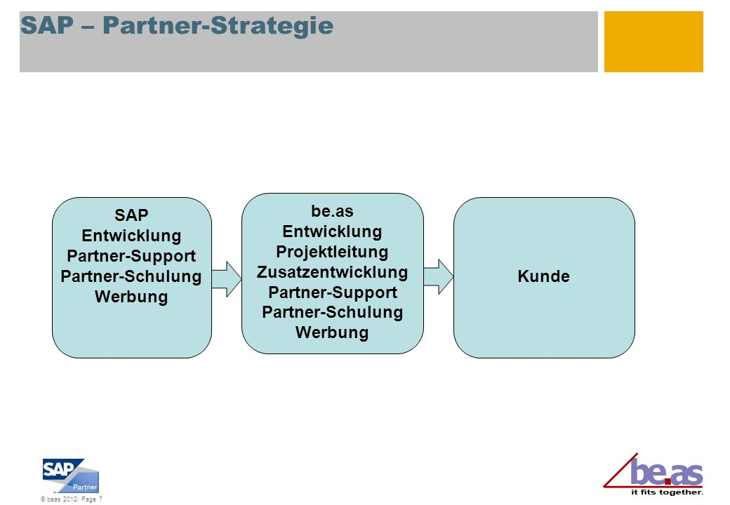 SAP – Partner-Strategie