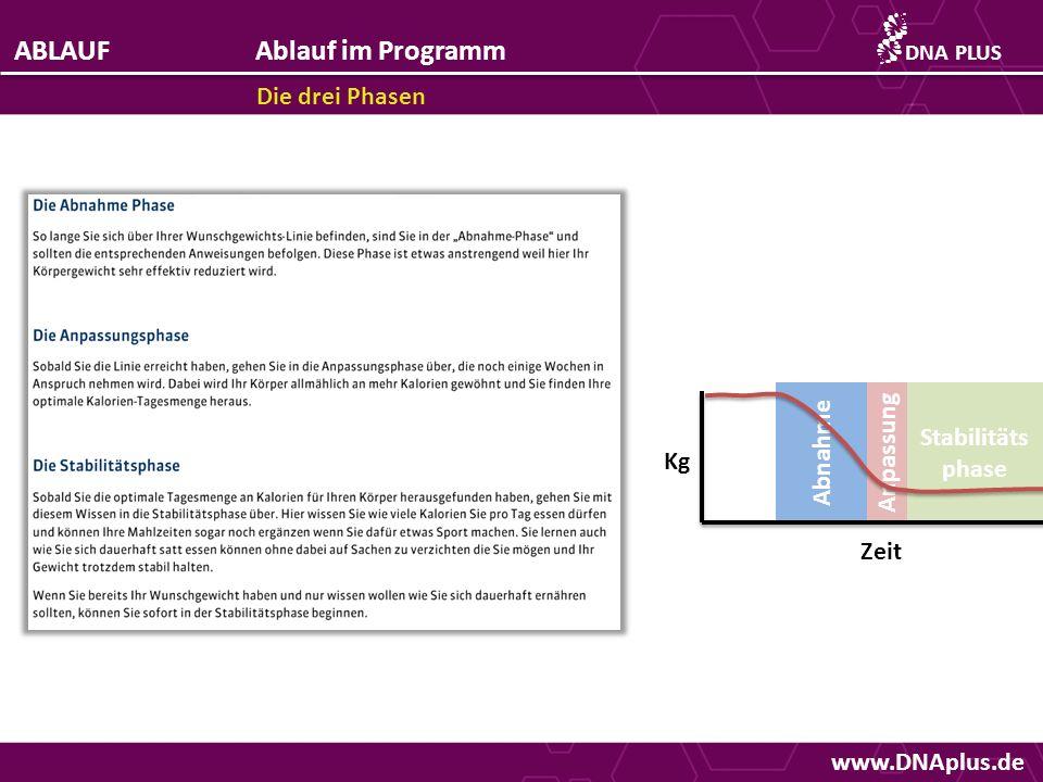 ABLAUF Ablauf im Programm Die drei Phasen Abnahme Anpassung