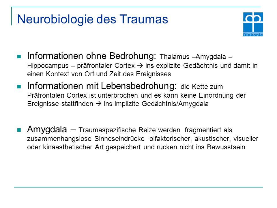 Neurobiologie des Traumas