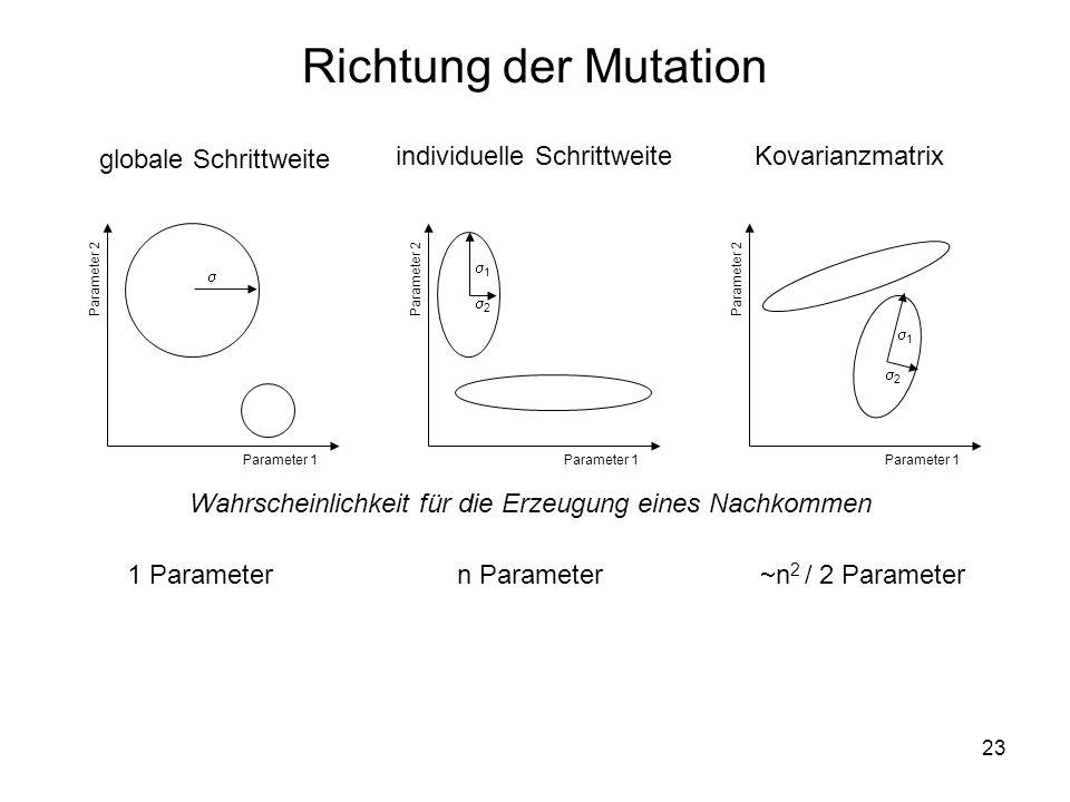 Richtung der Mutation globale Schrittweite individuelle Schrittweite