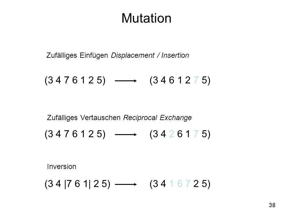 Mutation Zufälliges Einfügen Displacement / Insertion. (3 4 7 6 1 2 5) (3 4 6 1 2 7 5) Zufälliges Vertauschen Reciprocal Exchange.