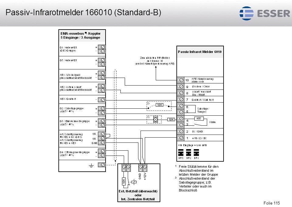 Passiv-Infrarotmelder 166010 (Standard-B)